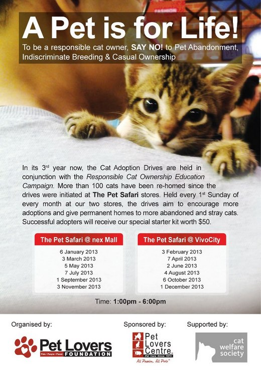 Pet Lovers Centre Cat Adoption Drives 2013