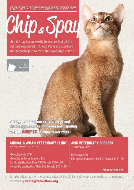 Cat Welfare Society's Chip & Spay Days