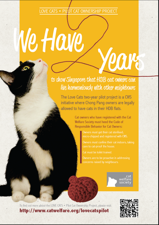 Volunteers needed for Love Cats Pilot Cat Ownership Project