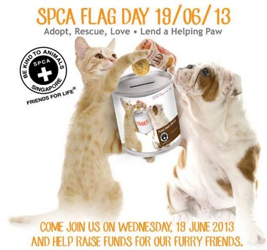 SPCA Flag Day 2013
