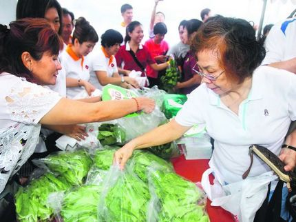 Community gardens raise S$5,900 for charity