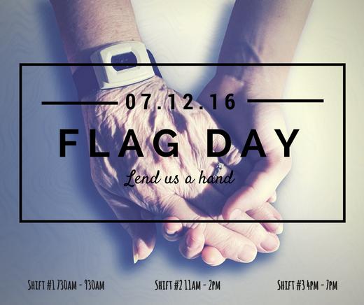 volunteer-for-lions-befrienders-flag-day-2016